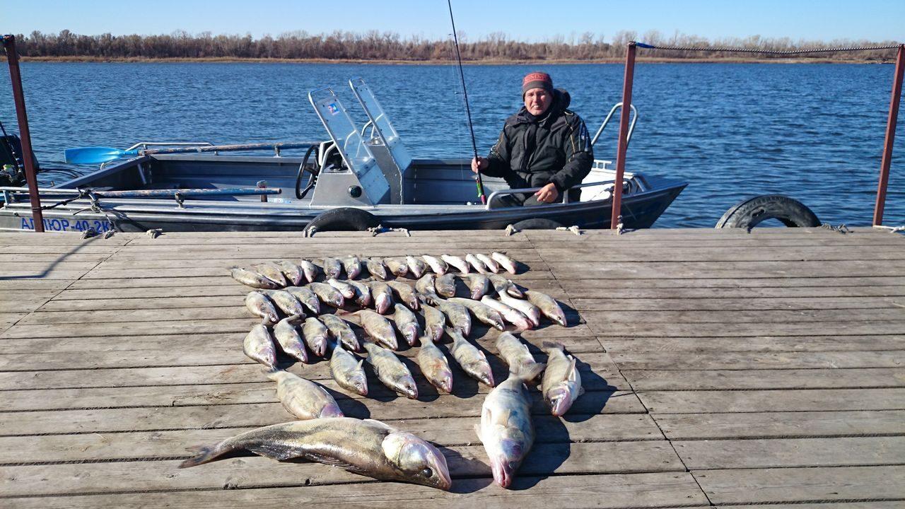 рыбалка в отвес на ахтубе