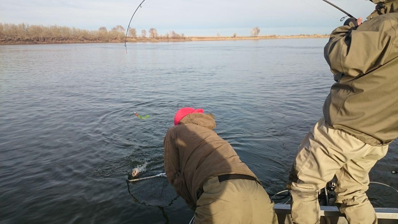 рыболовные базы на нижней волге