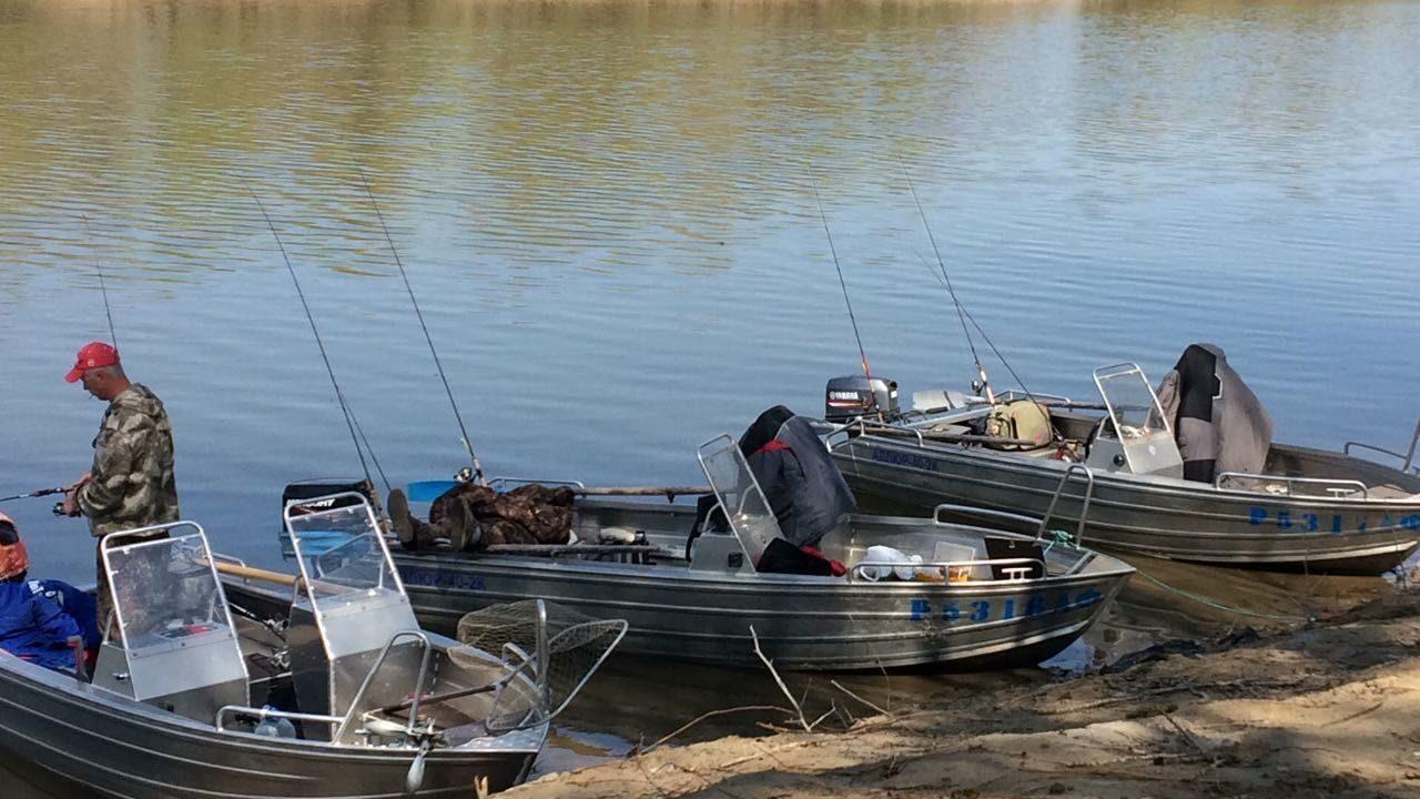 рыболовные базы на ахтубе с ценами