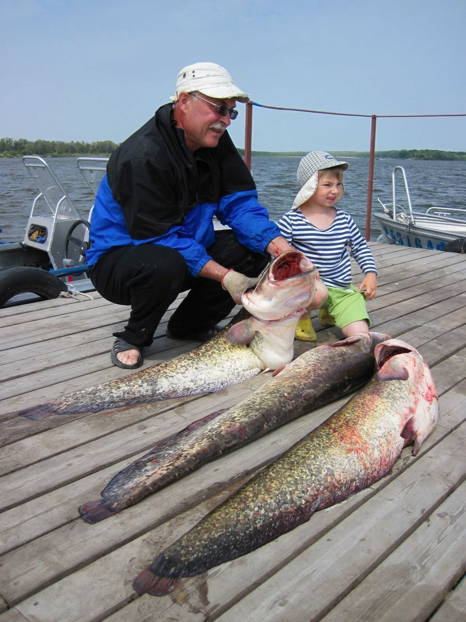 частная рыбалка на нижней волге видео